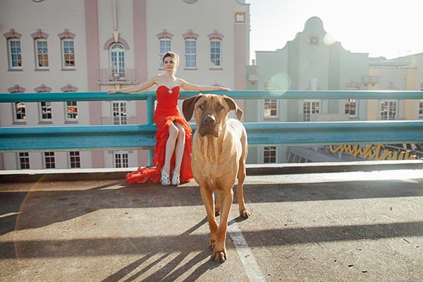 Model and creative dance portfolio